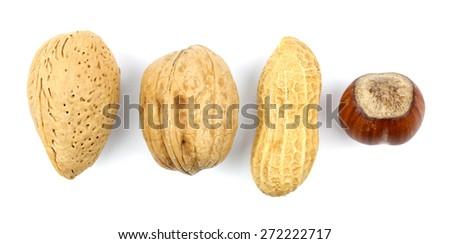 almonds hazelnuts walnuts green walnuts on a white background - stock photo