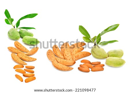 Almonds isolated on the white background. Collage - stock photo