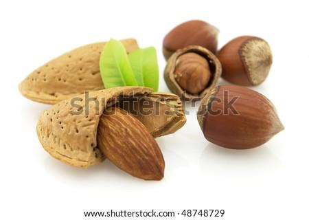 Almonds with hazelnuts - stock photo