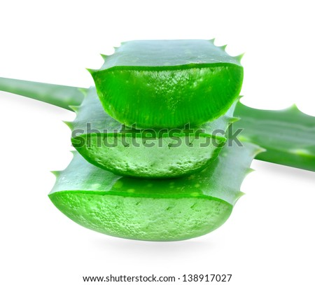 Aloe vera isolated on white background. - stock photo