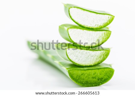 aloe vera  over white - stock photo
