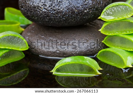 aloe vera spa setting with wet black massage stones  - stock photo