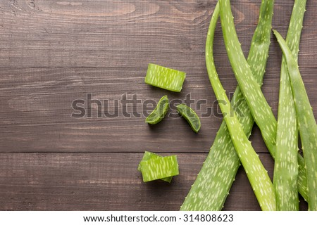 Aloevera fresh leaf on the wooden table. - stock photo