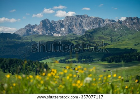 Alpe di Siusi with flowers during summer time - stock photo