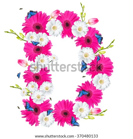 Alphabet D, flower isolated on white background. Gerber, tulips and butterfly  - stock photo
