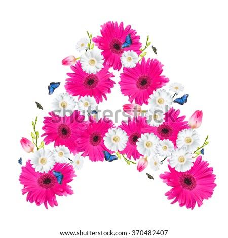 alphabet flower A, Gerber, tulips and butterfly isolated on white background.  - stock photo
