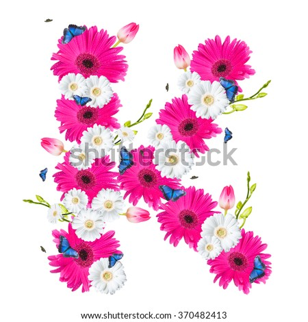 alphabet flower K, Gerber, tulips and butterfly isolated on white background.  - stock photo