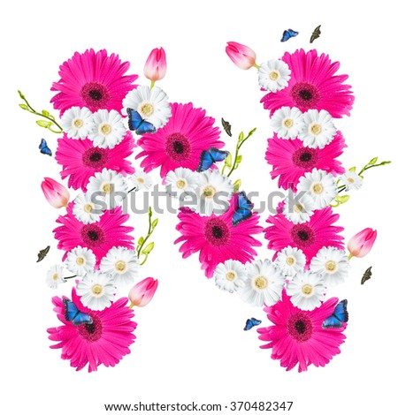 alphabet flower N, Gerber, tulips and butterfly isolated on white background.  - stock photo