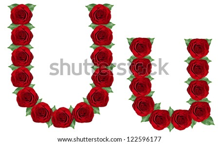 Alphabet. Letter U made from red roses and green leaves isolated on a white background - stock photo