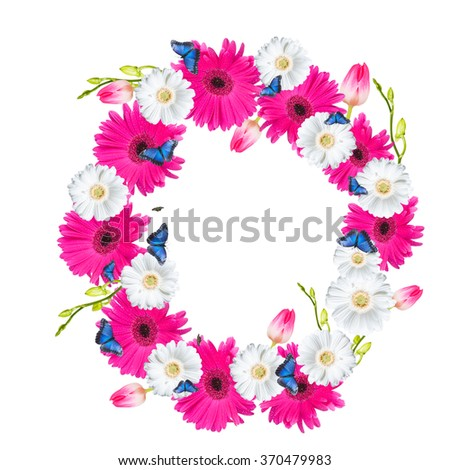 Alphabet O, flower isolated on white background. Gerber, tulips and butterfly  - stock photo