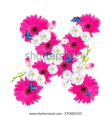 Alphabet X, flower isolated on white background. Gerber, tulips and butterfly  - stock photo