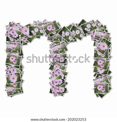 Alphabetic Lower-Case Letters In The Photos Of Flowers - stock photo