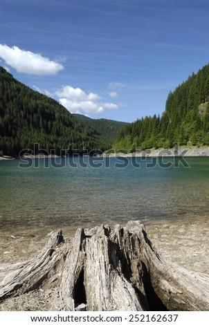 alpine lake with trunk - stock photo