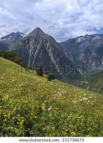 Alpine landscape, with some fresh grass in the foreground and a mountain in the background - stock photo