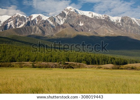 alpine meadows and high mountains - stock photo