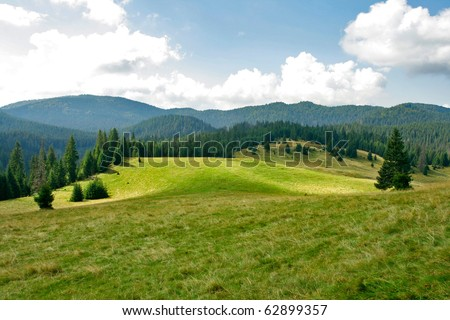 Alpine plain with forests and pastures - stock photo