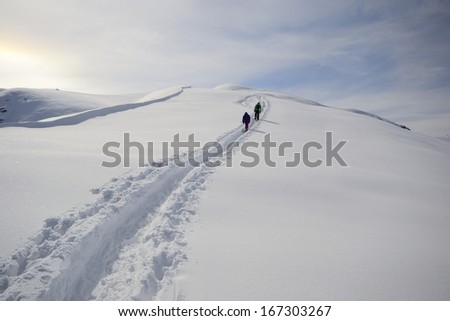 Alpinist hiking uphill by ski touring on the mountain ridge in powder snow  - stock photo