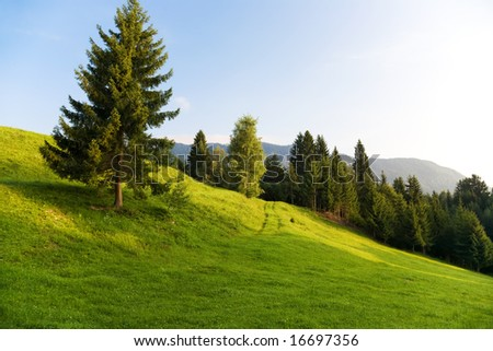 Alps morning landscape. On a hill. - stock photo