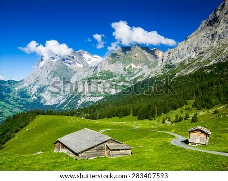Alps scenery with Grindelwald Village in Berner Oberland, Switzerland, Swiss - stock photo