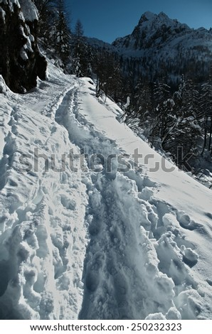 Alps. Track in the snow. - stock photo