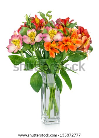 Alstroemeria flowers in  vase isolated on white - stock photo