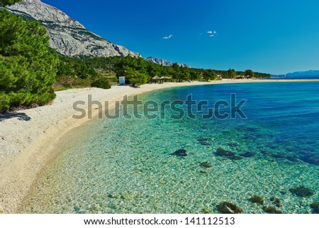 Amazing Adriatic Sea bay with pines and crystal clear water in Croatia - stock photo