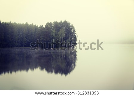 Amazing and silent morning by the lake. A small island is reflecting it's treeline on a still water. Image has a vintage effect applied. - stock photo