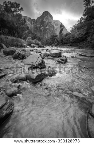 Amazing canyon with beautiful moment in Zion National Park, Black and White - stock photo