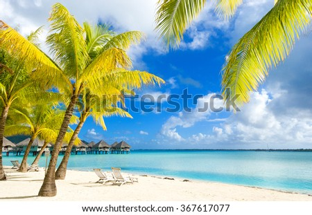 Amazing colors of polynesian exotic beach. Relax and vacation concept. - stock photo