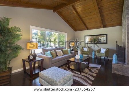 Amazing contemporary living room with view window, magnificent stone framed fire place, waved rug, table, indoor tree, couch with pillows, dark wooden floor and mirror. - stock photo