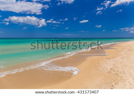 Amazing golden sand beach near Monopolli Capitolo, clear sky summer day, Apulia region, Southern Italy - stock photo