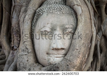 Amazing in Thailand, Head of Buddha statue in the tree roots at Wat Mahathat temple, Ayutthaya, Thailand. - stock photo