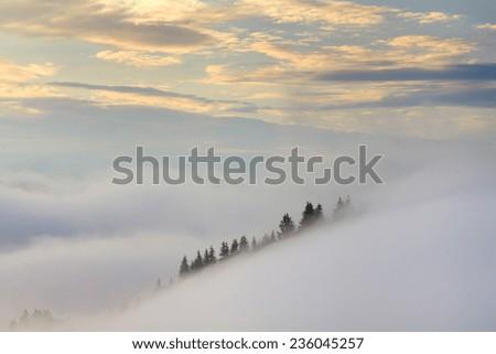 Amazing mountain landscape with dense fog. Carpathian Mountains. - stock photo