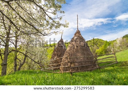 Amazing mountain landscape with  haystack and cherry blossom - stock photo