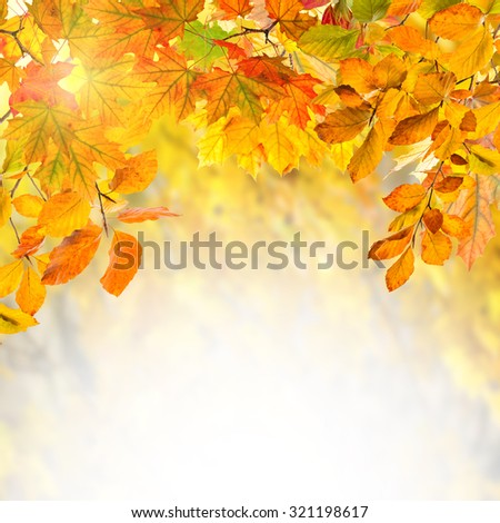 Amazing nature golden autumn background for your design - stock photo