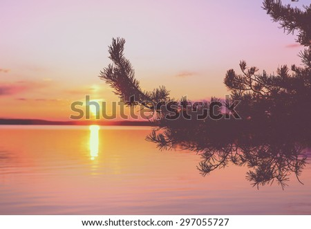 Amazing sunset by the lake through the branch. Colorful sky with dramatic clouds. Image has a vintage effect applied to create some artistic flavor. - stock photo