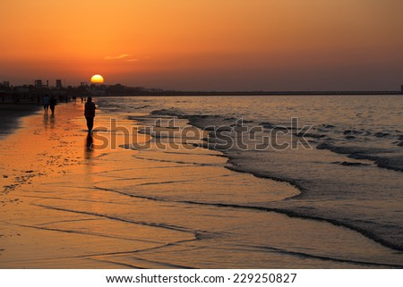 Amazing Sunset on the beach in Muscat, Oman - stock photo