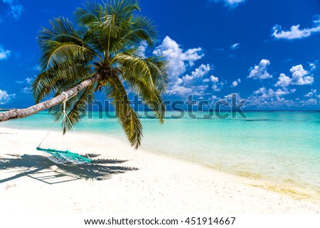Amazing tropical beach. Palm tree with a swing. Relaxing summer travel background concept. - stock photo