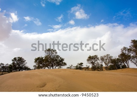 Amazing view of a sand dune - stock photo