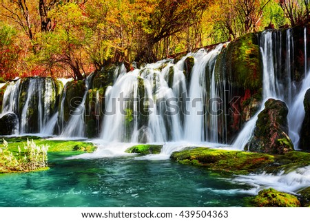 Amazing waterfall and azure lake with crystal clear water among fall woods in Jiuzhaigou nature reserve (Jiuzhai Valley National Park) of Sichuan province, China. Beautiful autumn forest landscape. - stock photo