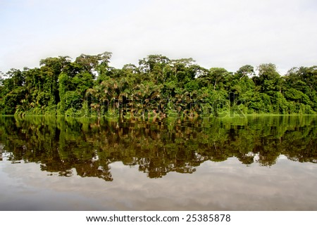 Amazon river - stock photo