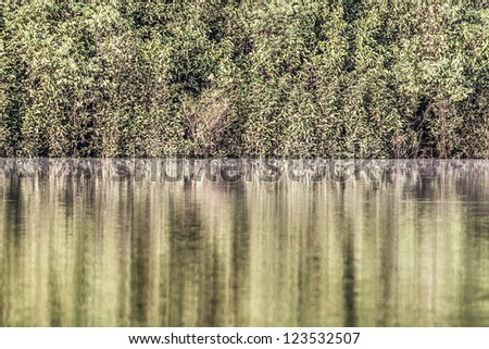 Amazon river in morning ( HDR image ) - stock photo