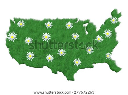 America made with grass and many daisy over her, 3d illustration - stock photo