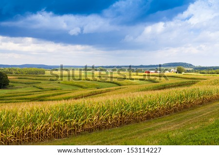 American Countryside Corn Field With Stormy Sky - stock photo
