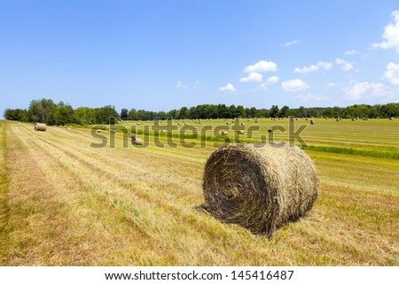 American countryside landscape with bundles of hay - stock photo