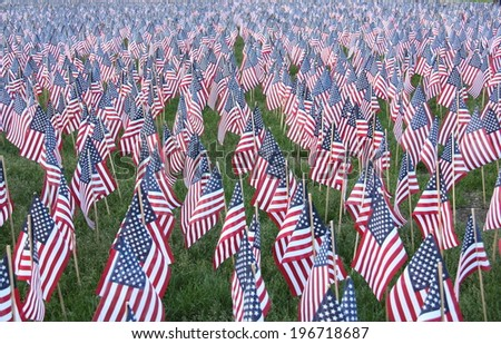 American flags displaying on Memorial Day - stock photo