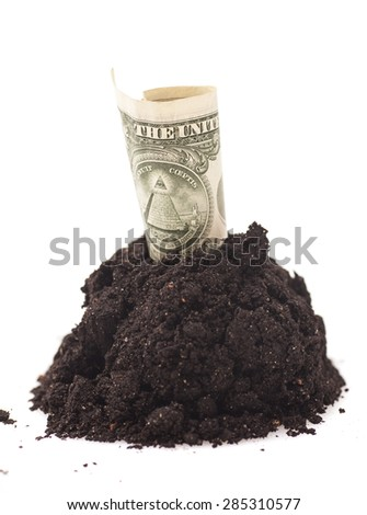 American One dollar  grow from Pile heap of soil on white - stock photo