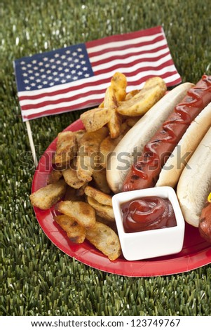 American snack consists of hotdog sandwiches with potato fries and ketchup dip laid on grass - stock photo