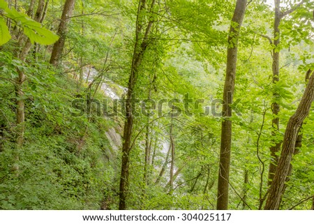Amicalola Falls, viewed from surrounding forest, in Georgia's State Park. - stock photo