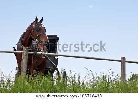 Amish horse and buggy tied to hitching post with sky and moon in the background. - stock photo